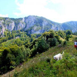 6 days in Apuseni Mountains